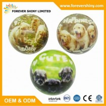 FA01-025 CUTIE PUPPY PU BALL