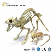 Skeleton Cat and Rat Set