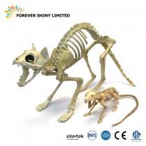 Skeleton CatandRatSet