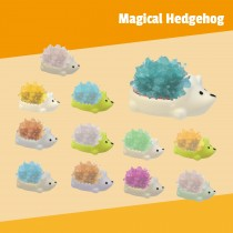 Magical Hedgehog
