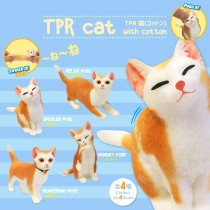 TPR Cat with cotton