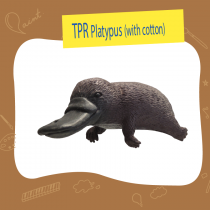 TPR Platypus with cotton
